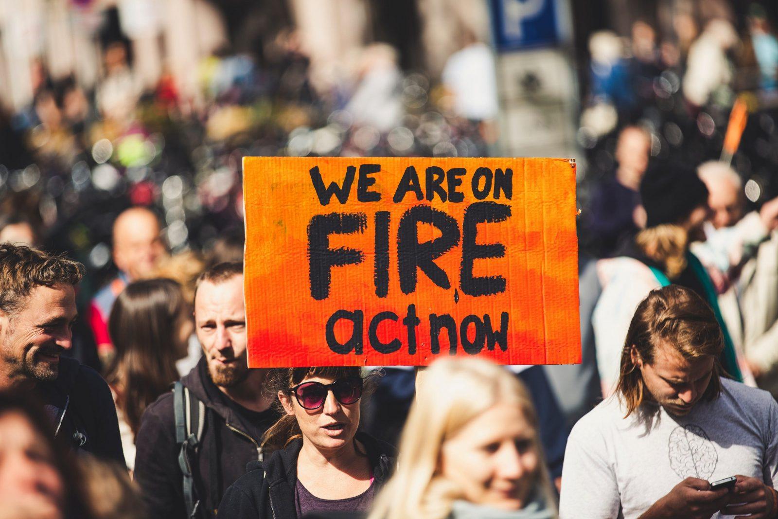 Jak być eko i nie zgłupieć (do reszty)? Katastroficzne wizje na rok 2020